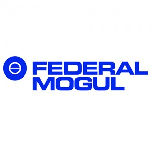 Federal Mogul Burscheid GmbH
